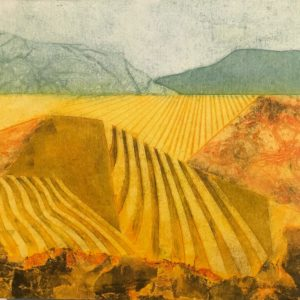 Art Gallery Albury Wodonga Artist Joan Mullarvey