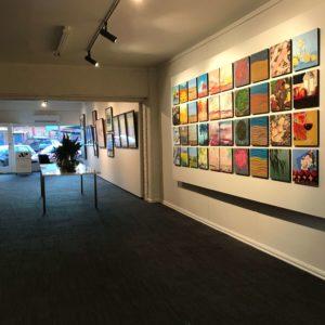 Art Gallery Albury Wodonga