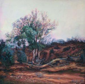 art for sale Australian artists Albury Wodonga