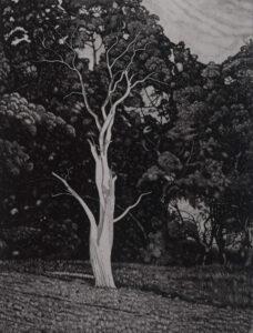 """apparition"" 2020 etching 80x60cm ed 50"