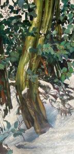 Kleinboonschate, Robert. Snow Gum Series II, art