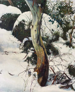 Kleinboonschate, Robert. Snow Gum Series IV,art