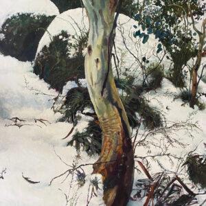 Kleinboonschate, Robert. Snow Gum Series IV,art